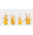 set of burning campfires vector image
