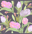 watercolor seamless floral pattern with tulips vector image vector image