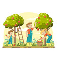 young family picking apples vector image vector image