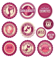 Beauty labels vector image vector image