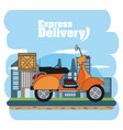 express delivery concept vector image vector image