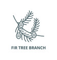 fir tree branch with cones line icon vector image vector image