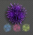 firework night sky design salute effect vector image
