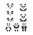 panda icon template vector image vector image