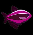 pink fish on black background vector image vector image