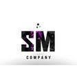 purple black alphabet letter sm s m logo vector image vector image