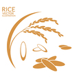 Rice Set vector image