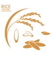 rice set vector image