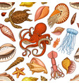 seamless pattern shells seaweed and octopus vector image