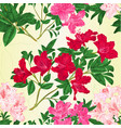 seamless texture branch rhododendron vector image