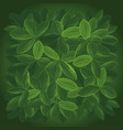 background large leaves top view vector image vector image