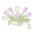 bouquet tulips in womans hands hand-drawn vector image