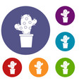 cactus icons set vector image vector image