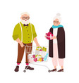 cute elderly couple with shopping cart full of vector image vector image