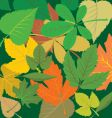 leafy background vector image