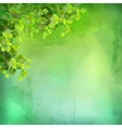 Watercolor Green Leaves Background vector image