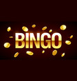 bingo game banner with bingo inscription and gold vector image vector image