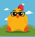 cute chicken animal cartoon vector image
