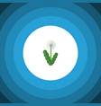 isolated dandelion flat icon floral vector image