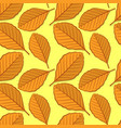 seamless pattern with beech autumn leaves vector image vector image
