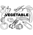 Vegetable coloring for adults vector image vector image