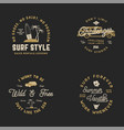 vntage hand drawn surfing graphics and emblems for vector image vector image