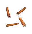 watercolor cinnamon sticks set vector image vector image