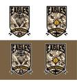 eagles air warrriors army shields set design vector image