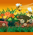 background scene with bee and frog vector image vector image