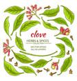 clove elements set vector image