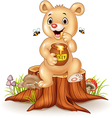 Cute baby bear holding honey pot on tree stump vector image vector image