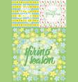 floral spring seamless patterns set vector image