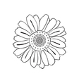 hand drawn daisy doodle style vector image