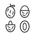 lychees outline icons set vector image