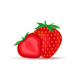 strawberry fruit icon vector image vector image