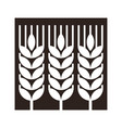 Wheat ear sign