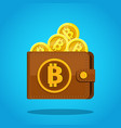 concept crypto currency brown bitcoin wallet vector image