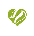 loving heart decorated with green leaves vector image vector image