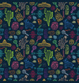 mexico collection pattern vector image