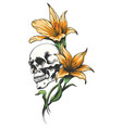 skull with orchid flowers vector image