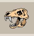 t rex skull vector image
