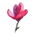 Watercolor magnolia vector image