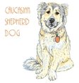 Caucasian Shepherd Dog breed vector image vector image