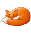 cute fox cartoon sleeps vector image vector image