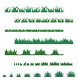 grass collection various types vector image