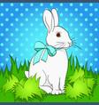 Pop art easter bunny on green grass comic book