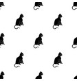 american shorthair icon in black style isolated on vector image vector image