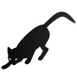 black halloween cat icon vector image