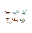 collection of geometric insects set mosquito vector image