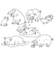 set cute cartoon pigs vector image vector image
